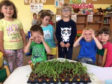 Przedszkolne ogródki