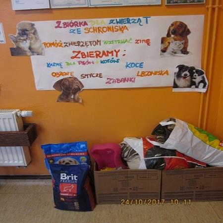 Zbiórka dla zwierząt ze schroniska